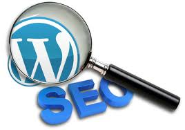 CMS WordPress SEO
